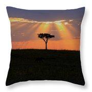 African Sunset Rays Throw Pillow