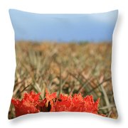 African Tulip Blossom Over Pineapple Field Aloha Makawao Throw Pillow