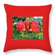 African Tulip Flower #2 Throw Pillow