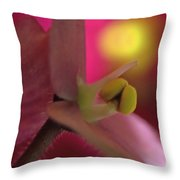 African Violet Throw Pillow