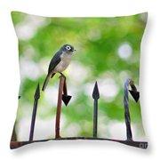African White-eye Bird Throw Pillow