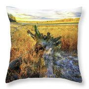 After Big Thaw Throw Pillow