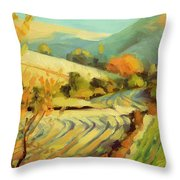 After Harvest Throw Pillow