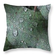 After The Rain 4 Throw Pillow