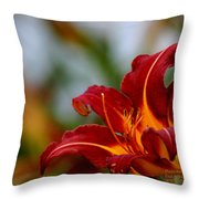 After The Rain Came The Flowers  Throw Pillow