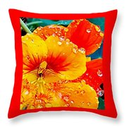 After The Rain Color Throw Pillow