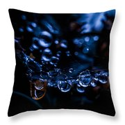 After The Rain II Throw Pillow
