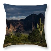 After The Rain In The Superstitions  Throw Pillow