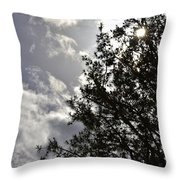 After The Rain V Throw Pillow