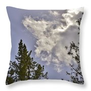 After The Rain Vi Throw Pillow