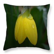 After The Rain - Yellow Daffodil 2 Throw Pillow