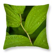 After The Rainfall Throw Pillow