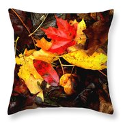 After The Rains Of Autumn Throw Pillow