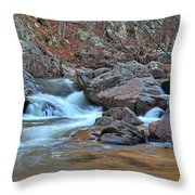 After The Rains On Pickle Creek 1 Throw Pillow