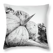 After The Reign Throw Pillow