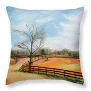 After The Ride Throw Pillow