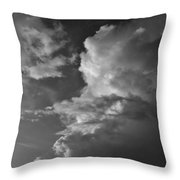 After The Storm In Black And White Throw Pillow