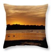 After The Sun Went Below The Horizon Throw Pillow