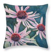 Afterglow II Throw Pillow