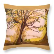 Afternoon Alone  Throw Pillow