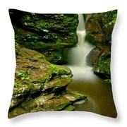 Afternoon At Adams Falls Throw Pillow
