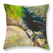 Afternoon Beside The Lane Cove River Throw Pillow
