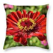 Afternoon Dance Throw Pillow by Valeria Donaldson