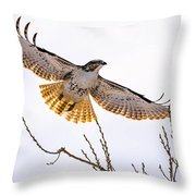 Afternoon Flight Throw Pillow
