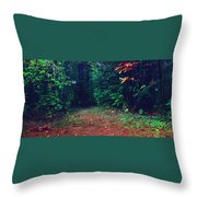 Afternoon Journey Throw Pillow