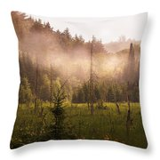 Afternoon Mist Throw Pillow