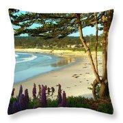 Afternoon On Carmel Beach Throw Pillow