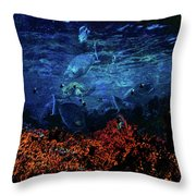 Afternoon On The Reef Throw Pillow