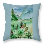 Afternoon Rainbow Throw Pillow