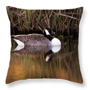 Afternoon Relax Throw Pillow