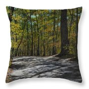 Afternoon Shadows - Oconne State Park Throw Pillow