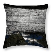 Afternoon Shimmer Throw Pillow