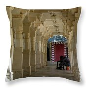 Afternoon Siesta Throw Pillow