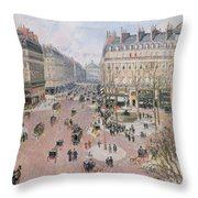 Afternoon Sun In Winter Throw Pillow