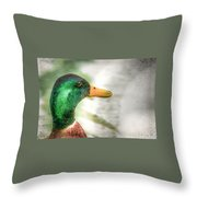 Afternoon Surprise Throw Pillow