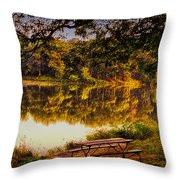 Afternoon View Argyle Lake Illinois Throw Pillow