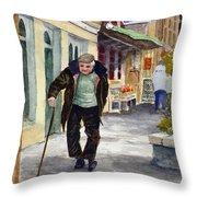 Afternoon Walk Throw Pillow