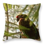 Afteroon Snooze Throw Pillow