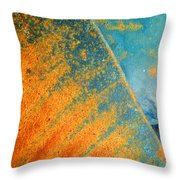 Afterthought Throw Pillow