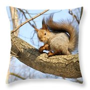Again With The Camera Throw Pillow