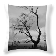 Against Sky Throw Pillow by Lee Stickels