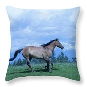 Against The Clouds Throw Pillow