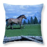 Against The Clouds Three Throw Pillow