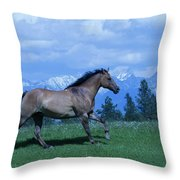 Against The Clouds Two Throw Pillow