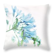 Agapanthus 1 Throw Pillow