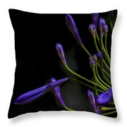 Agapanthus In The Shadows Throw Pillow